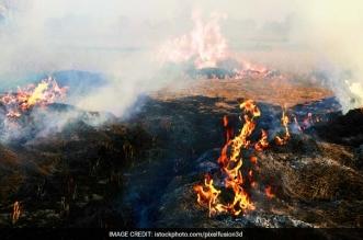 banega swachh india - Burning Roadside Trash In India Emits Toxic Rainbow