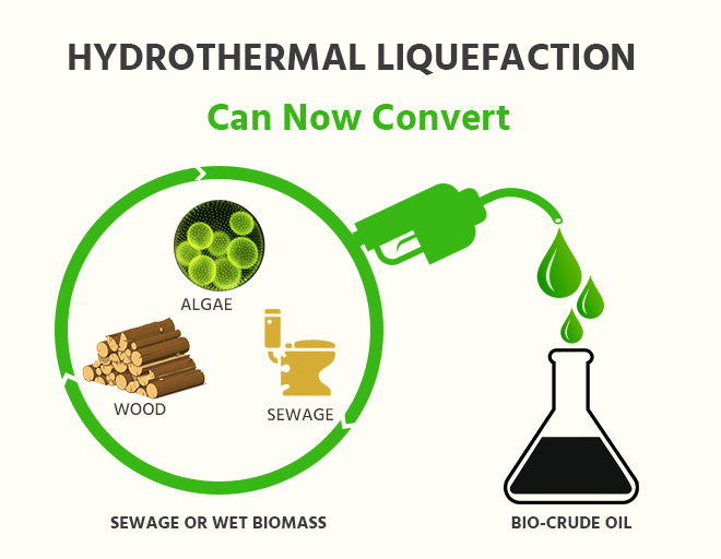 Hydrothermal liquification