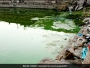 Swachh India_Binge-Eating Bacteria Can Help Extract Energy From Sewage