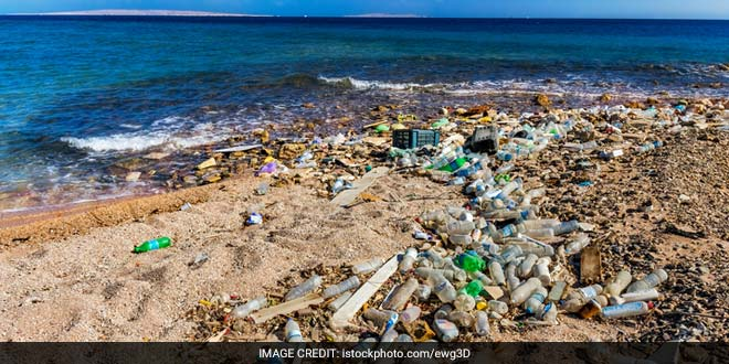 Oceans May Have More Plastic Than Fish By 2050: World Economic Forum Study