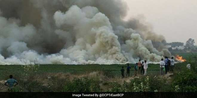 Bellandur Lake Tragedy: National Green Tribunal Shuts 76 Polluting Industries, Asks Authorities To Cut Water, Electricity Supply