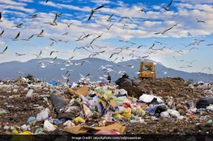 Top 10 Things To Know About India's Waste Management Woes