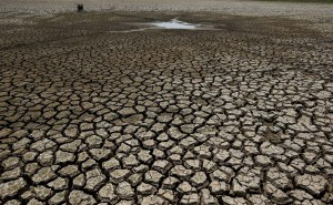 Gujarat: Only 21.74 Per Cent Water Left In 203 Dams