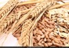 Whole Grain May Reduce Risk Of Heart Disease: Study