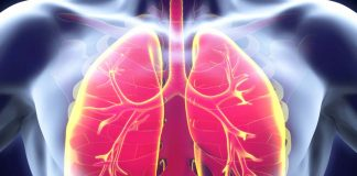 The Reason Behind Lungs Losing Their Ability To Heal