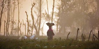 Women Farmers Battle Tradition, Self-doubt To Own Land In Uttar Pradesh