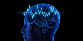 Genes, Environment Affect Language-related Brain Activity: Study