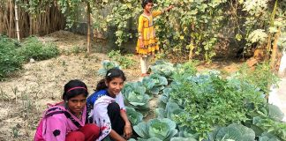 Vegetable Gardens Preventing Bengal Girls From Early Marriage, Trafficking