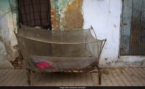 On World Malaria Day, Tribal Areas In Odisha To Get Insecticidal Nets