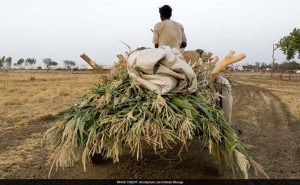 Now, Jharkhand Farmers To Get Loans At 1% Interest Rate