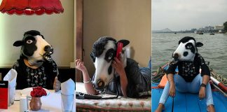 With Cow Masks On,  Women Raise Safety Questions