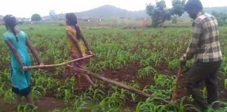 Farmer's Daughters Who Pulled Plough Can Now Go To School