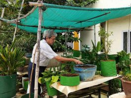 This Chennai Man Powers His Home, Doesn't Need LPG To Cook