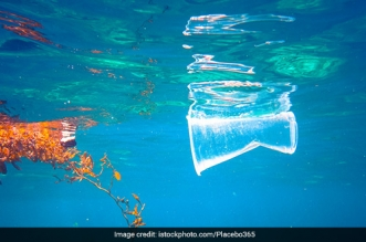 World Oceans Day: 5 Trillion Pieces Of Plastic Floating In World's Oceans