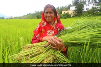 Swachh Bharat Abhiyan Is Turning Uttarakhand Women Into Entrepreneurs, Here's How