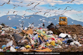 A Landfill Size Of Delhi Will Be Needed To Dump India's Waste By 2050: Study
