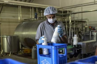 National Green Tribunal Allows Gajraula Dairy Firm To Resume Its Operation After Shutting It Down For Three Months