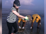 dia-mirza-cleaning-beach_ndtv
