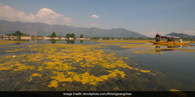 Dal Lake in Kashmir