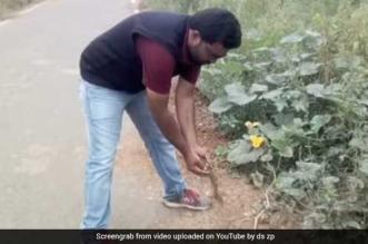 pdo-mahadevswamy-open-defecattion-free-village-clean-road1
