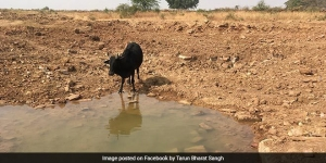 United Nations Lauds NGO Tarun Bharat Sangh's Efforts In Utilising Nature-Based Solutions To Conserve Water In Rajasthan
