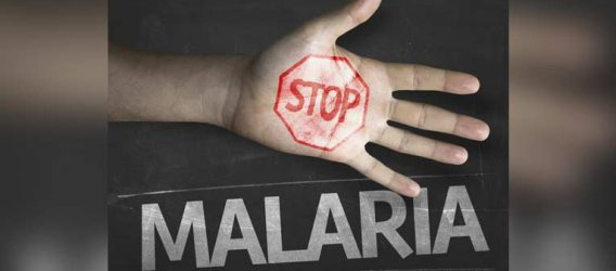 World Malaria Day: Africa To Receive World's First Malaria Vaccine