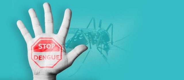 Dengue Fever: Learn About Its Symptoms, Causes and Treatment