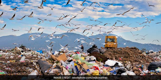 Will NGT's Order Of Rs. 10,000 Fine On Public Littering Solve Anything?