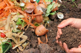 Implement City Compost Policy In Time-Bound Manner: Parliamentary Panel