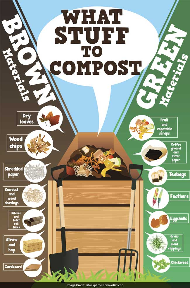 From Garbage To Garden: Learn The Art Of Composting At Home