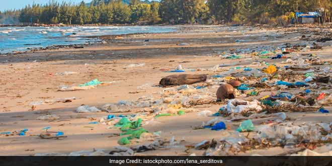 Zsuzsanna Ferrao and her husband Lisbon have taken inspiration from the Swachh Bharat Abhiyan and are regularly cleaning up the Rangaon beach in Palghar