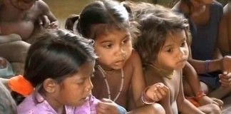Maharashtra Government Pulled Up For Malnourishment Deaths
