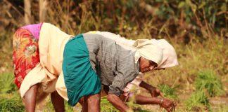 New Land Laws In Andhra Pradesh, Telangana Will Hurt Farmers, Say Activists