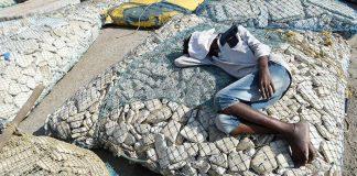 With Upcoming Shivaji Statue, Mumbai's Fishing Community Fears Losing Livelihoods