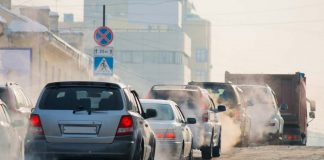 Food That Can Help Curb Damage Caused By Air Pollution
