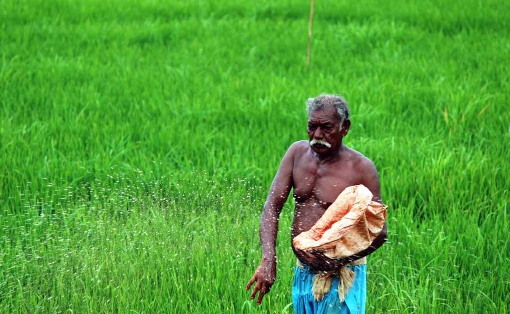 Kerala Farmer Stock Photos and Images  alamycom