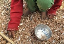 India Has World's Highest Number Of Stunted Children, Child Workers