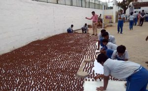 Students Create 10,000 Seed 'Bombs' For A Greener Chennai