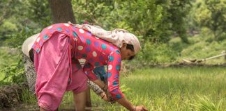 As Men Migrate To Cities, Women Farmers SeekLand Rights