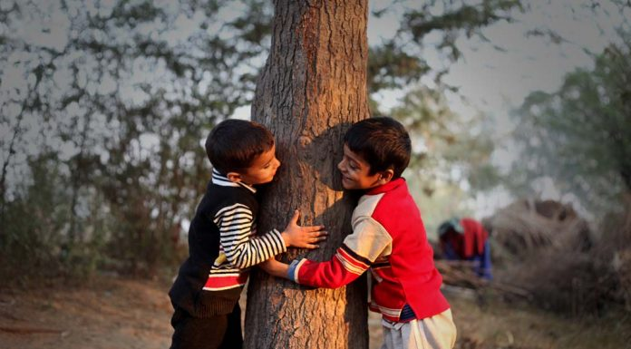 More Trees Can Reduce Diarrhoeal Disease In Rural Children, Shows Study