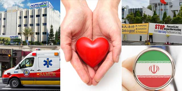 Organ Donation Programmes Across The World
