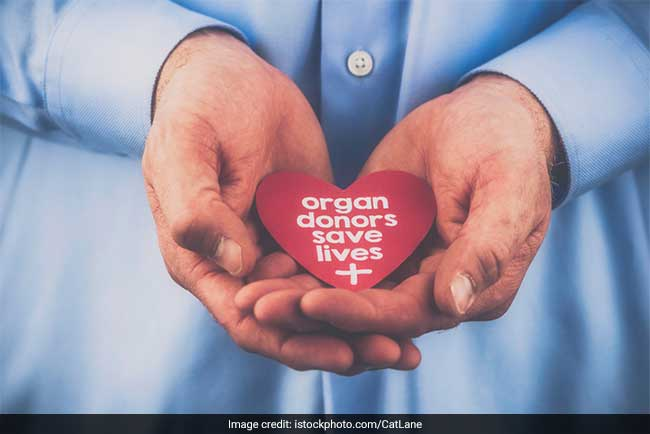 From Living To Deceased Organ Donation, Here Are The Organs That Can Be Donated
