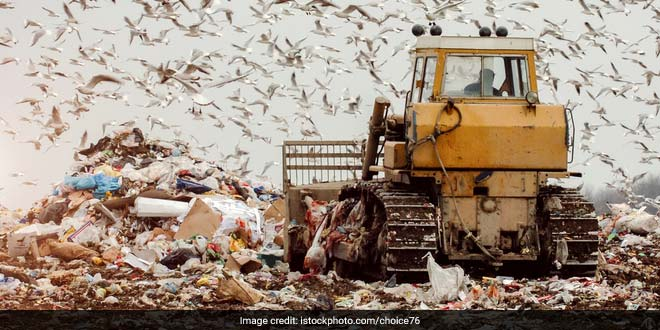 India Gears Up For The World Environment Day 2017, Will Launch Waste Segregation Campaign. Here's All You Need To Know