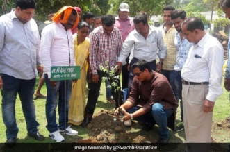 Tree planting drive at Bhilai