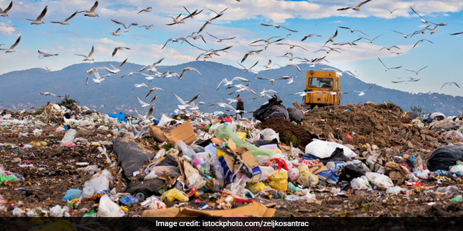 Haryana To Set Up Integrated Solid Waste Management Project, Plant Expected To Generate 100 MW Of Electricity Daily