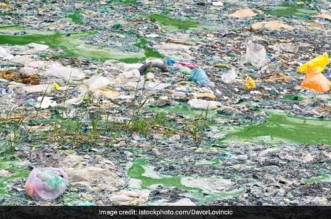 On World Environment Day, Centre pledged to eradicate single- use plastic by 2022