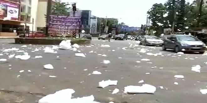 National Green Tribunal Seeks Action Plan From Karnataka On Removal Of Silt And Waste From Bengaluru's Bellandur Lake