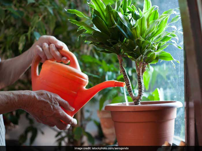 Collecting overflowing water from pots