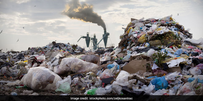 The Green Court Directs Delhi Government To Ensure That There Is No Indiscriminate Dumping Of Garbage In The City