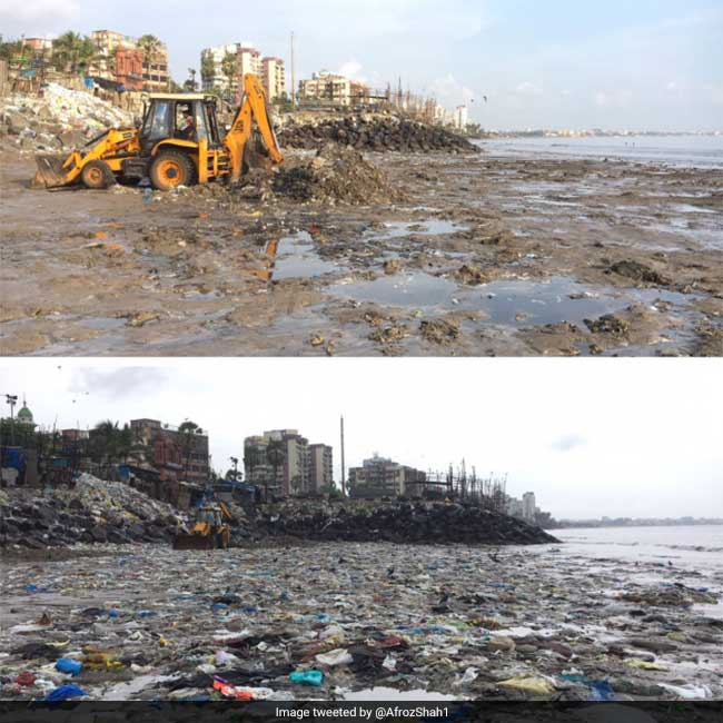 International Coastal Cleanup Day: More Than 3,000 People Unite To Remove Around 2.54 Lakh Kilograms Of Plastic And Garbage From Versova